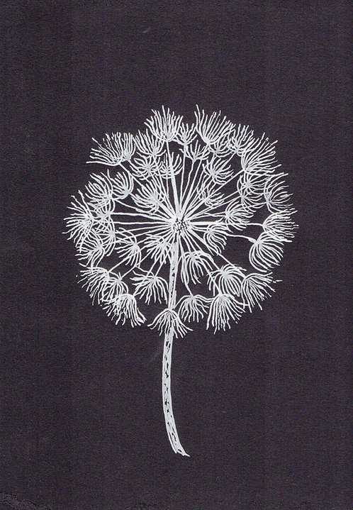 Print of an original painting of a dandelion by Sarah Caisey