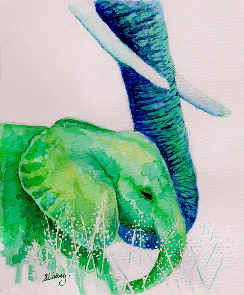 Print of original painting of a baby elephant by Sarah Caisey