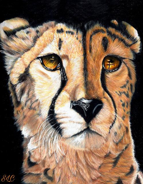 Cheetah blank card