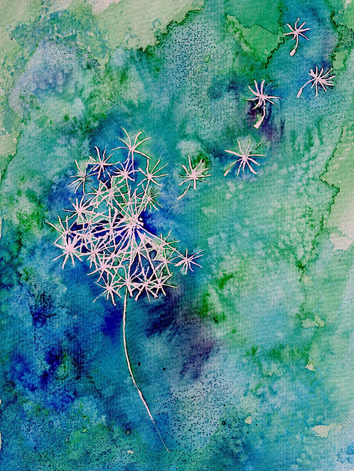 Blank card. Print of painting of a Dandelion by Sarah Caisey