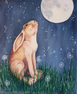 Moon Gazing Hare