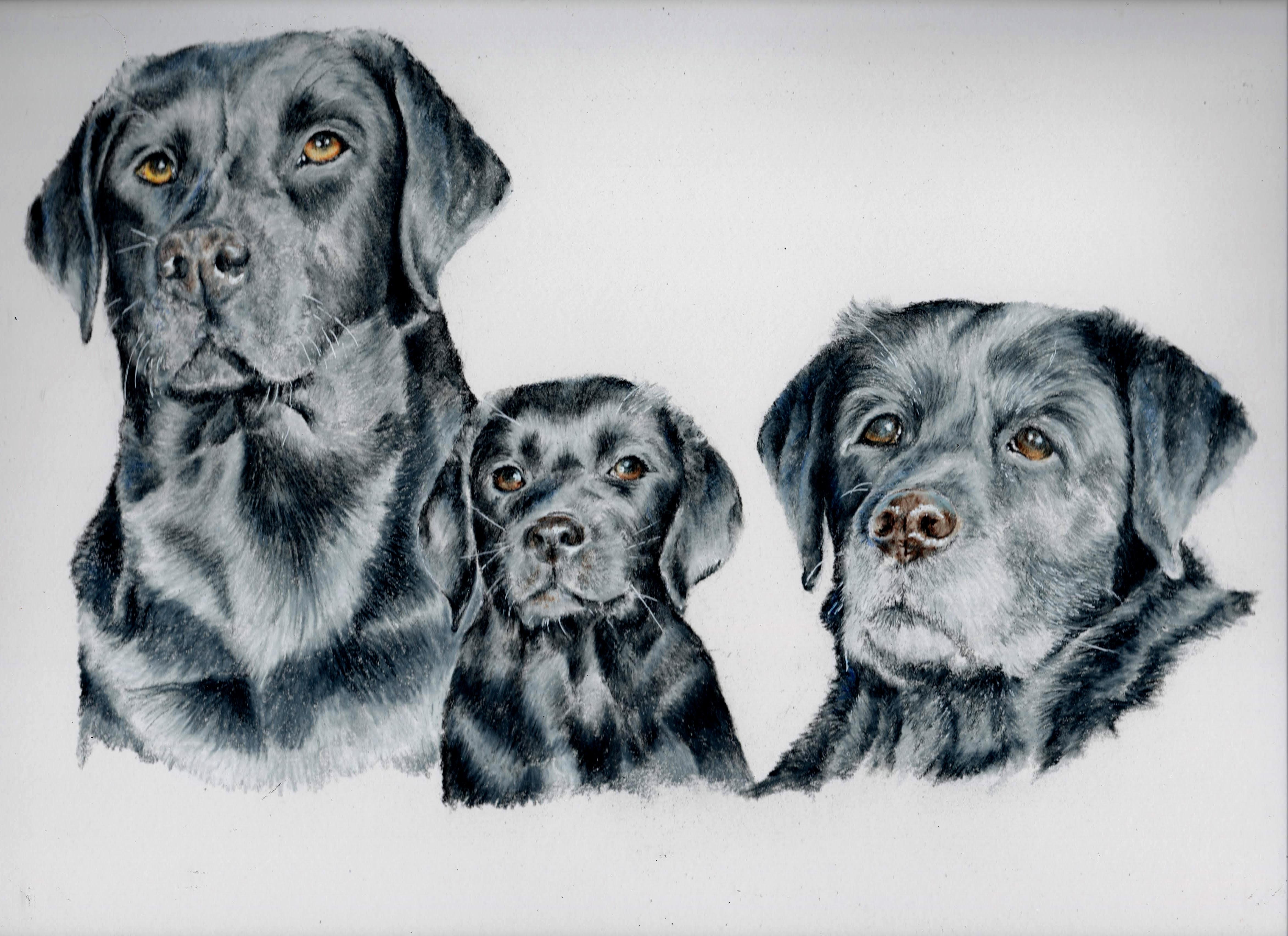 Maisie, Esme & Jess