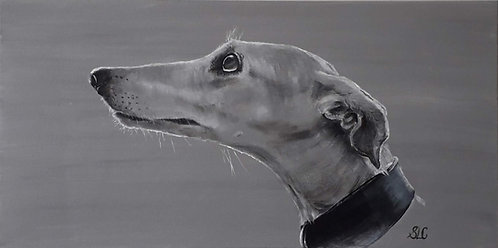 Print of original painting of a Greyhound by Sarah Caisey