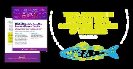 TMAO TB 2019_03_06-01.png