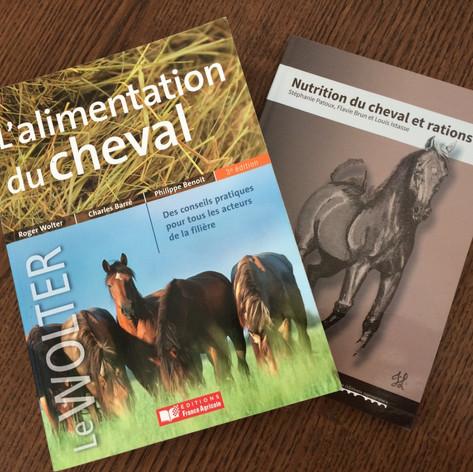 nutrition et rations chevaux