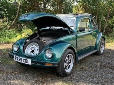 Luxury beetle