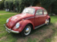 beetle-vw-for-sale