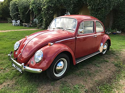 beetle-vw-for-sale.jpg