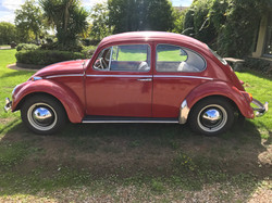 vw-1965-beetle-for-sale