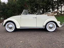 convertible beetles for sale