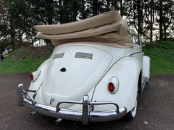 convertible classic beetle