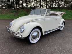 classic convertible beetles