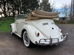 white convertible beetle essex