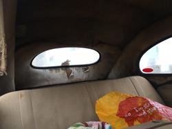 1955 Oval Deluxe Beetle Rear Seats