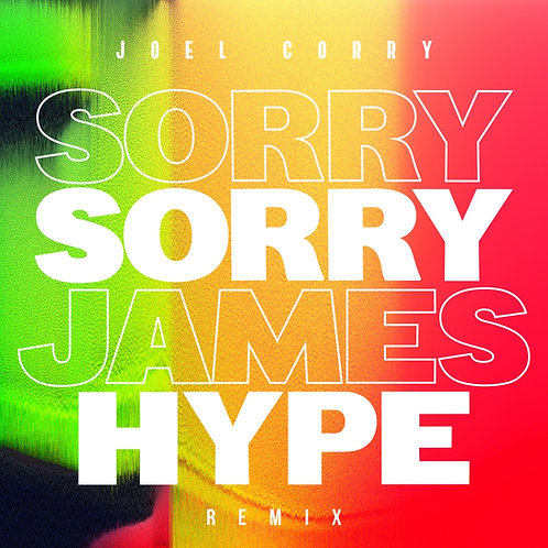 Sorry - James Hype Remix - Producer Sample Pack