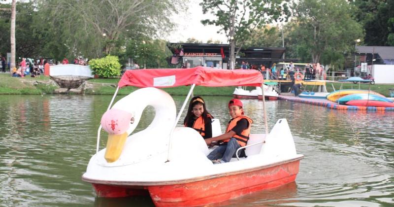 Flamingo Boat
