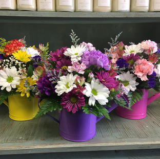 Watering Can Arrangments
