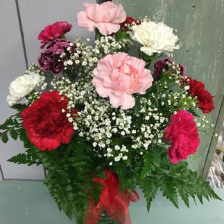 A Dozen Carnations Arranged