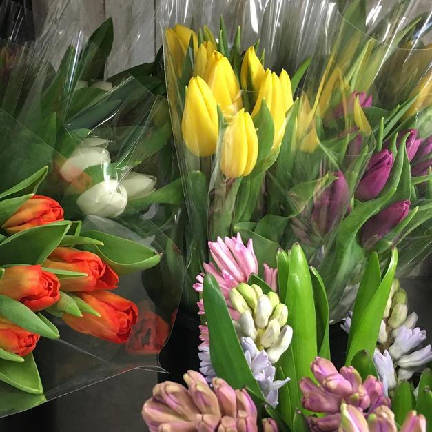 Tulips & Hyachinths