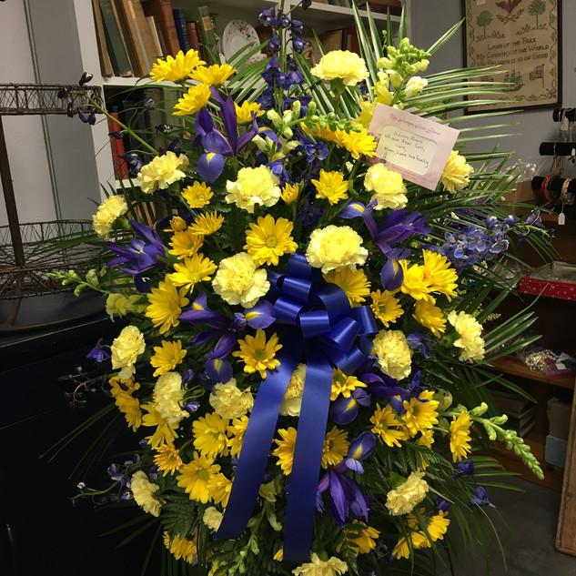 S7- Blue & Yellow Spray $185