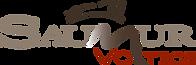 logo-Saumur-Voltige-2018.png