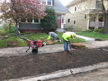 Prepping ground for sod
