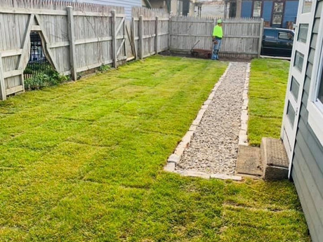 French Drain and Sod installation