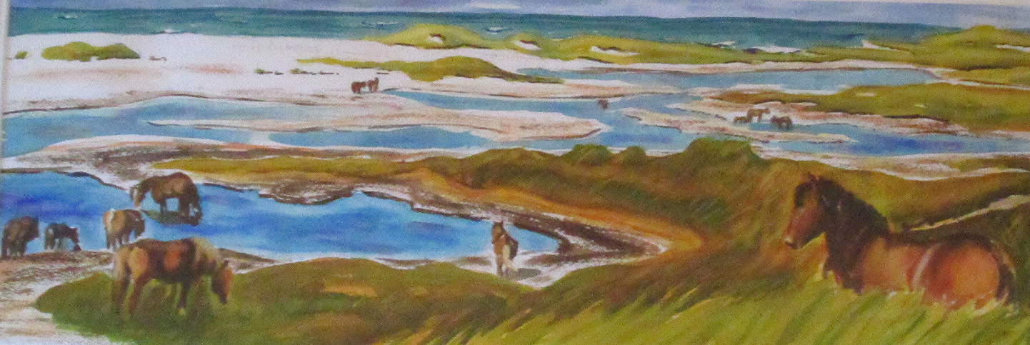Sable Island Ponds