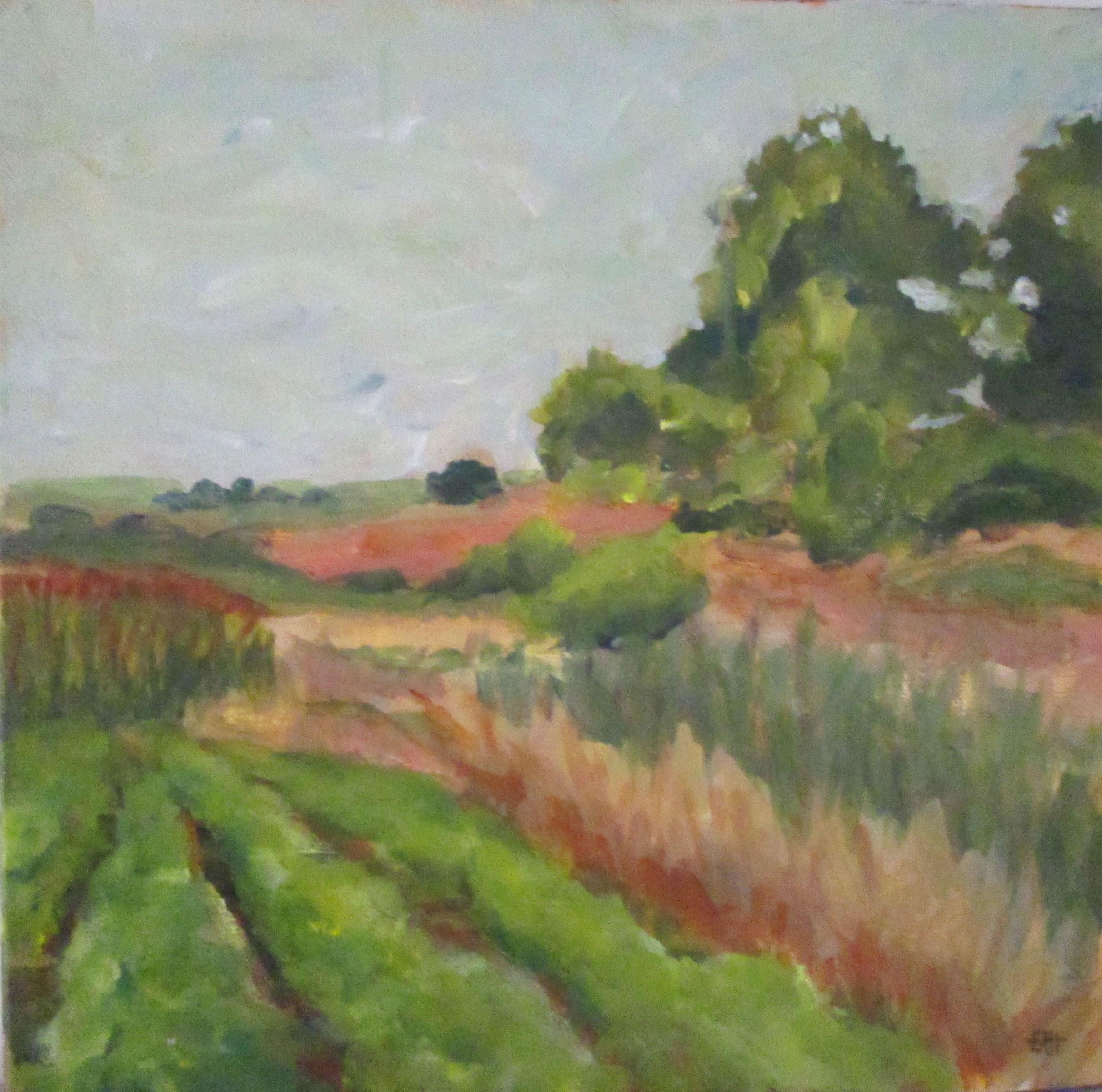 Valley Fields 12 X 12