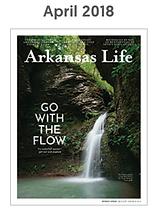 Arkansas Life Professional Organizer, home organizer, digital organizer, arkansas organizer, declutter in little rock, professional organizer in Little Rock, konmari, marie kondo, arkansas organizer