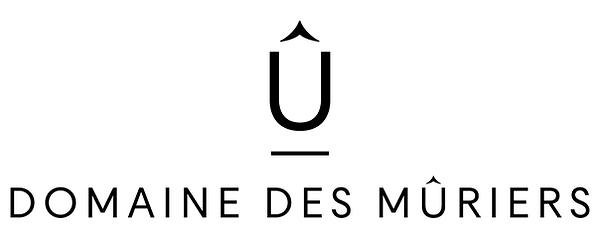 DdM_Logo_2.png