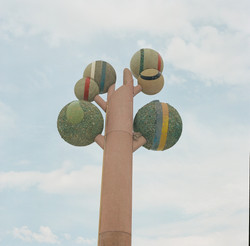tree of life tennis balls