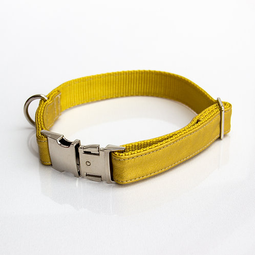 Royal gold eco leather Collar