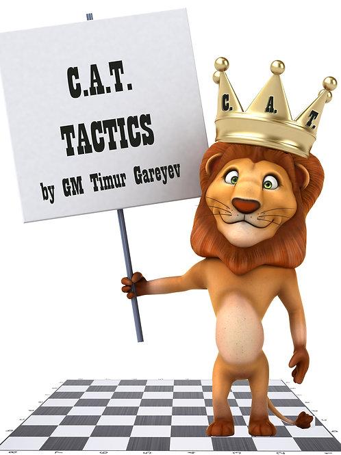 CAT Tactics workbook