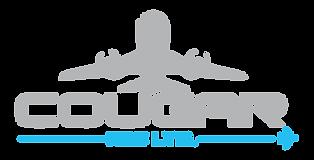 Cougar-NDE-Next-Gen-Logo800x407.png