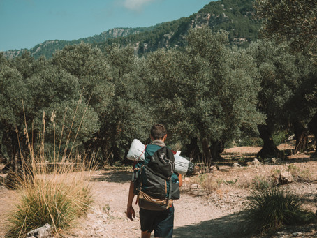 Explore the island of Majorca on a hiking adventure