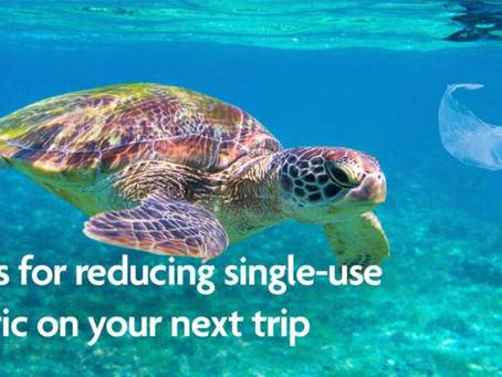Five Tips For Reducing Single-Use Plastic On Your Next Trip.