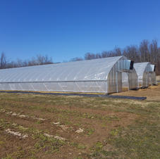 30' Gothic w/ Polycarbonate Endwall Covering