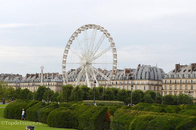 Сад Тюильри, Сад рядом с Лувром, Сад Тюильри фото, обзорное колесо в Париже