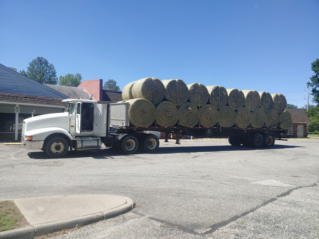 Truckloads of Rounds