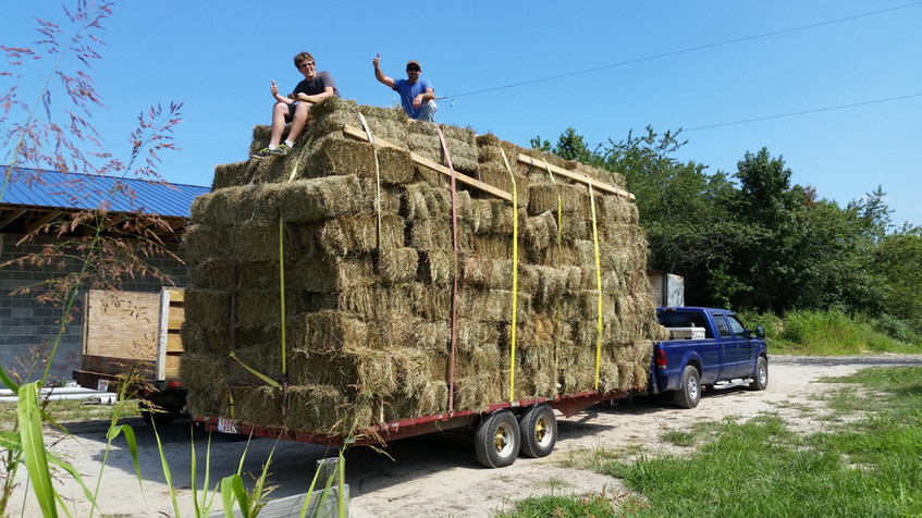 My Son and Mike Sitting  on 250 bales  they just pickup