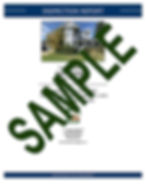 Sample Report Icon-small.jpg