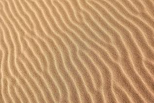 sophro sable2.jpeg