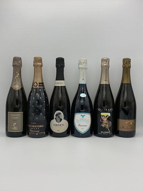 シャンパーニュ方式(瓶内二次発酵)ワイン6本セット
