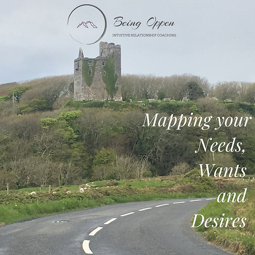 Mapping Needs, Wants and Desires Workbook