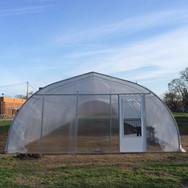 Our First Hoophouse