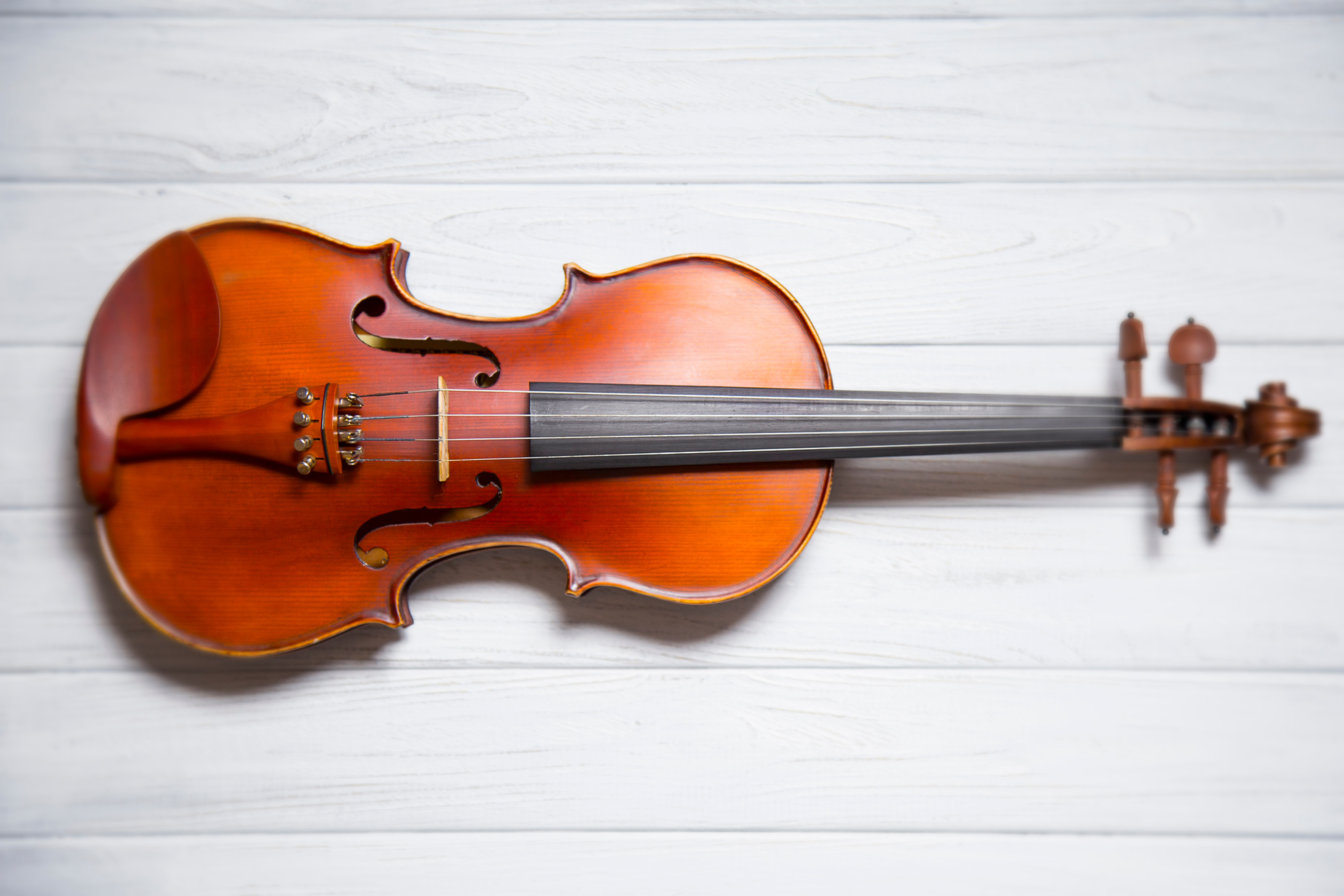 Beginning Violin or Cello