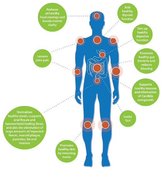 Bowel Restore Gut Health Naturally