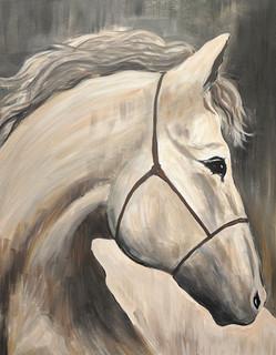 Horse of Beauty