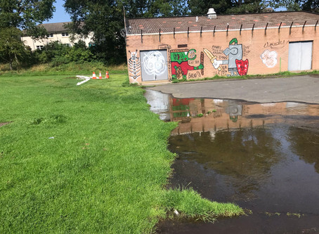 Sewage in Redhall Park